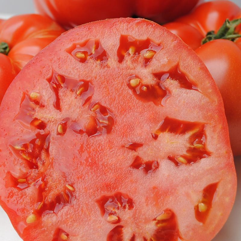 Jack Tomatoes