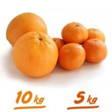 10kg. Juice Oranges and 5kg. Tangerines