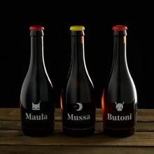 Valenzianisches Craft-Bier mit Orange und Blutorange