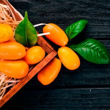 Kumquats: 1kg (il suffit d'ajouter 1 kg par boîte d'oranges)